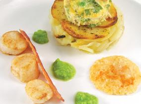 Create and Cook 2012 recipes - Solent Scallop and Pea Tower